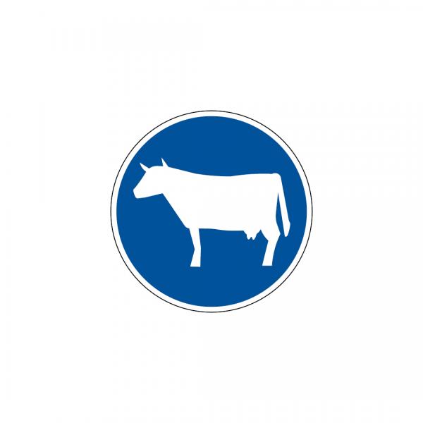 D7D - Pista obrigatória para gado em manada - Sinais de Obrigação